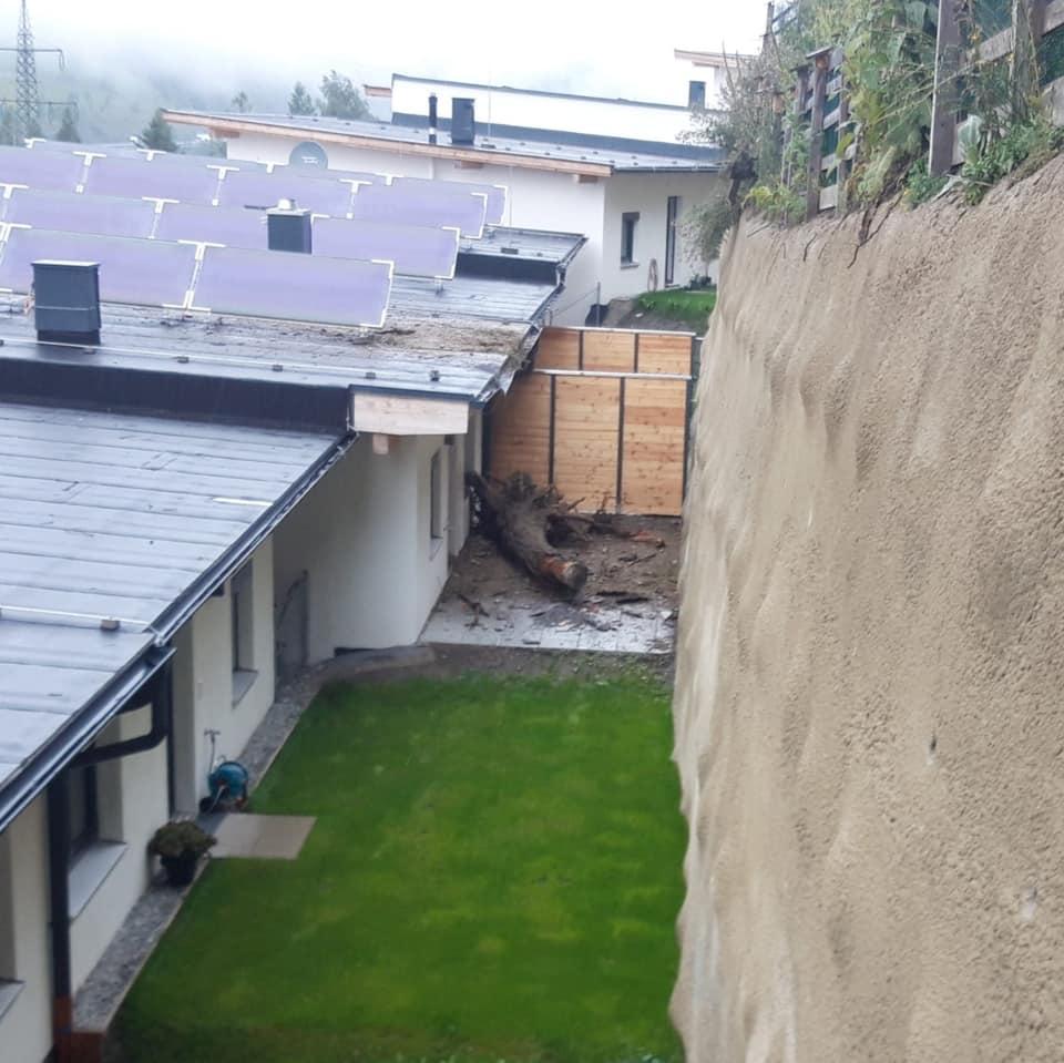THL – Baum auf Haus gestürzt